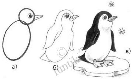 penguin drawing for kids photo13 - Images For Drawing For Kids